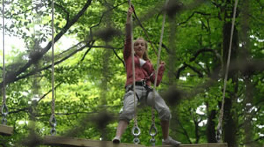 Tree Surfers Launch With High Rope Activity
