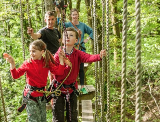 Family-Tree-Surfers-photo|rope-bridge2|Step-tree|Up-in-the-trees|High-up-in-the-trees1