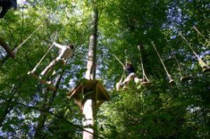 high ropes cornwall